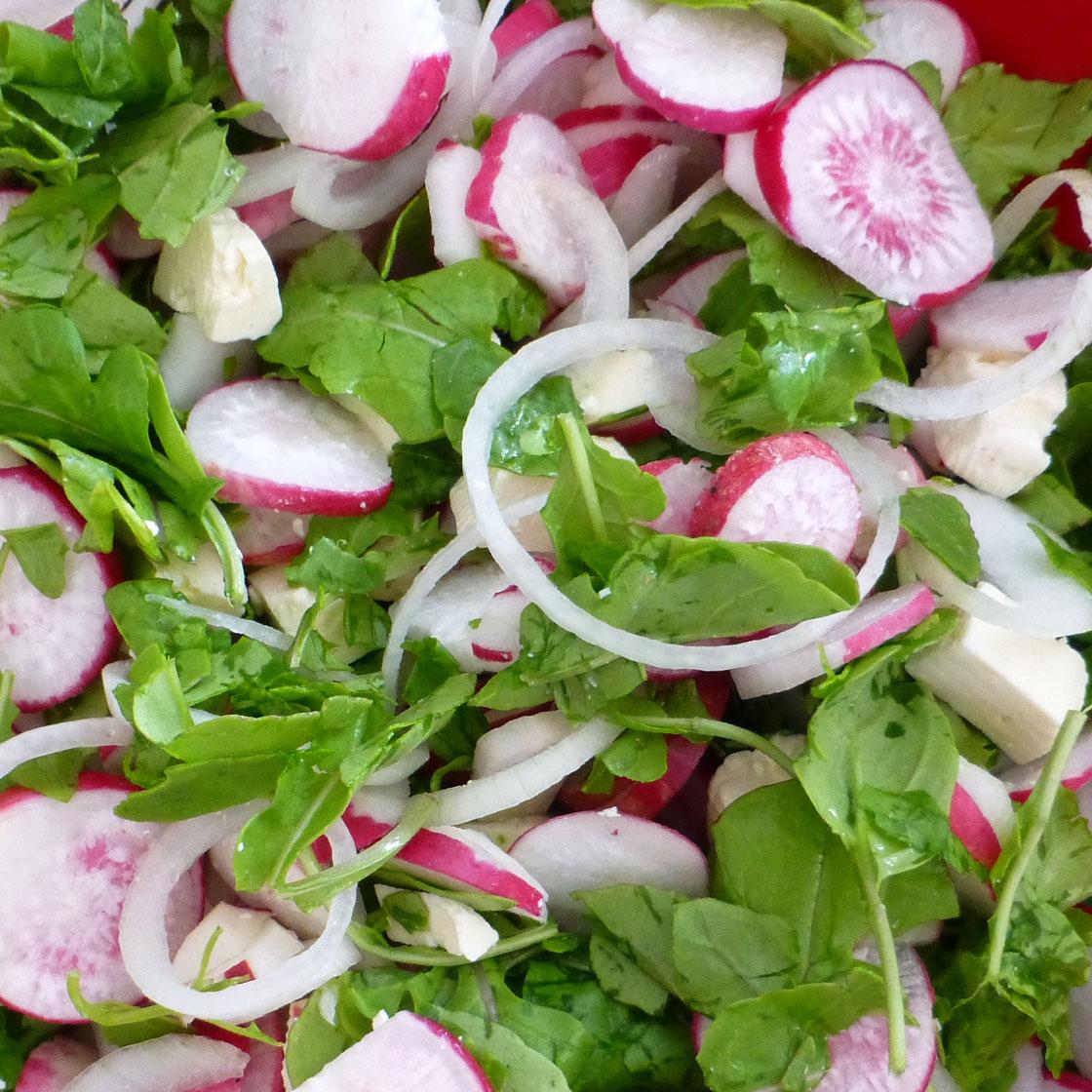 Insalata con spinacini, ravanelli e cipolla di Tropea