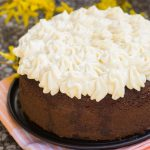 Torta con farina di castagne, cacao e cocco